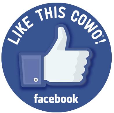 Facebook Coworking Urbino